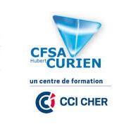 Logo cfsa